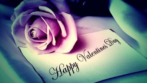 happy-valentines-day-hd-wallpaper-with-pink-rose